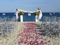 Weddings on the Sea of Cortez