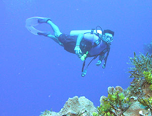 World class Scuba diving on Cozumel