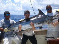 Sportfishing in the Riviera Maya